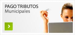 PAGO TRIBUTOS Municipales
